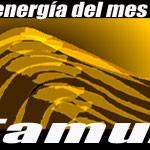 tamuz_m[1]